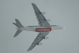 cassiopeiaさんが、成田国際空港で撮影したエミレーツ航空 A380-861の航空フォト(写真)
