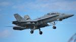 こびとさんさんが、岩国空港で撮影したアメリカ海兵隊 F/A-18D Hornetの航空フォト(写真)