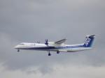WLMさんが、仙台空港で撮影したANAウイングス DHC-8-402Q Dash 8の航空フォト(写真)