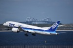 flying-dutchmanさんが、羽田空港で撮影した全日空 787-8 Dreamlinerの航空フォト(写真)