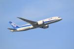 気分屋さんが、成田国際空港で撮影した全日空 787-8 Dreamlinerの航空フォト(写真)