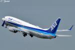 吉田高士さんが、羽田空港で撮影した全日空 737-881の航空フォト(写真)