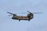 もぐ3さんが、新潟空港で撮影した陸上自衛隊 CH-47Jの航空フォト(写真)