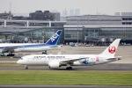 ぽん太さんが、羽田空港で撮影した日本航空 787-8 Dreamlinerの航空フォト(写真)