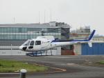 TUILANYAKSUさんが、東京ヘリポートで撮影したディーエイチシー AS350B3 Ecureuilの航空フォト(写真)