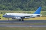 sky77さんが、成田国際空港で撮影したユナイテッド航空 A319-132の航空フォト(写真)