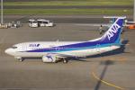 PASSENGERさんが、羽田空港で撮影したエアーネクスト 737-54Kの航空フォト(写真)