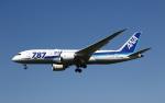 MOHICANさんが、福岡空港で撮影した全日空 787-8 Dreamlinerの航空フォト(写真)