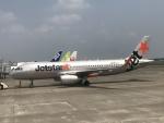職業旅人さんが、鹿児島空港で撮影したジェットスター・ジャパン A320-232の航空フォト(写真)