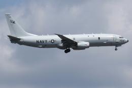 isiさんが、厚木飛行場で撮影したアメリカ海軍 P-8A (737-8FV)の航空フォト(写真)