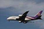 MI-YANさんが、成田国際空港で撮影したタイ国際航空 A380-841の航空フォト(写真)