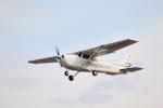 Mizuki24さんが、調布飛行場で撮影したアイベックスアビエイション 172S Skyhawk SPの航空フォト(写真)