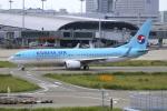 Koba UNITED®さんが、関西国際空港で撮影した大韓航空 737-8Q8の航空フォト(写真)