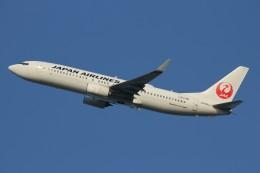 コギモニさんが、小松空港で撮影した日本航空 737-846の航空フォト(写真)