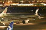 おかめさんが、羽田空港で撮影したシンガポール航空 777-312/ERの航空フォト(写真)
