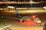 おかめさんが、羽田空港で撮影した全日空 787-8 Dreamlinerの航空フォト(写真)