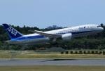 Espace77さんが、成田国際空港で撮影した全日空 787-8 Dreamlinerの航空フォト(写真)