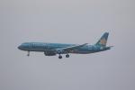 MA~RUさんが、成田国際空港で撮影したベトナム航空 A321-231の航空フォト(写真)