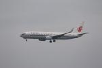 MA~RUさんが、成田国際空港で撮影した中国国際航空 737-89Lの航空フォト(写真)