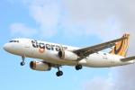 空飛ぶティラミスさんが、シドニー国際空港で撮影したタイガーエア・オーストラリア A320-232の航空フォト(写真)