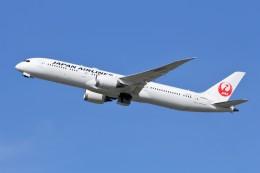 YASKYさんが、成田国際空港で撮影した日本航空 787-9の航空フォト(写真)