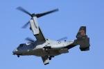 松乃一茶さんが、岩国空港で撮影したアメリカ海兵隊 MV-22Bの航空フォト(写真)