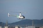 カンタさんが、名古屋飛行場で撮影したセコインターナショナル R44 Raven IIの航空フォト(写真)