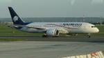 AE31Xさんが、パリ シャルル・ド・ゴール国際空港で撮影したアエロメヒコ航空 787-8 Dreamlinerの航空フォト(写真)