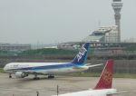 Rsaさんが、上海浦東国際空港で撮影した全日空 767-381/ERの航空フォト(写真)
