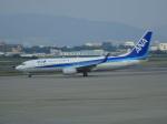 O.TAKUMAさんが、伊丹空港で撮影した全日空 737-881の航空フォト(写真)