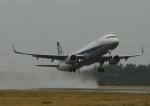 だだちゃ豆さんが、庄内空港で撮影した全日空 A321-211の航空フォト(写真)