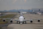 msrwさんが、関西国際空港で撮影したタイ国際航空 A380-841の航空フォト(写真)