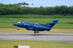 TAKAHIDEさんが、新潟空港で撮影した航空自衛隊 U-125A(Hawker 800)の航空フォト(写真)