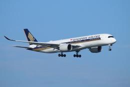 ceskykrumlovさんが、羽田空港で撮影したシンガポール航空 A350-941XWBの航空フォト(写真)