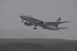 みつるさんが、庄内空港で撮影した全日空 767-381の航空フォト(写真)