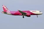 あしゅーさんが、福岡空港で撮影したピーチ A320-214の航空フォト(写真)