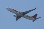 pringlesさんが、関西国際空港で撮影したティーウェイ航空 737-8Q8の航空フォト(写真)