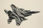 Kanarinaさんが、築城基地で撮影した航空自衛隊 F-15DJ Eagleの航空フォト(写真)