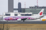 mameshibaさんが、成田国際空港で撮影した中国国際航空 737-86Nの航空フォト(写真)