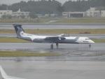 TUILANYAKSUさんが、成田国際空港で撮影したオーロラ DHC-8-402Q Dash 8の航空フォト(写真)