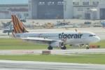 raiden0822さんが、那覇空港で撮影したタイガーエア 台湾 A320-232の航空フォト(写真)