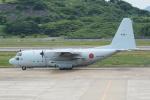 HEATHROWさんが、長崎空港で撮影した海上自衛隊 C-130Rの航空フォト(写真)