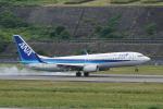 HEATHROWさんが、長崎空港で撮影した全日空 737-881の航空フォト(写真)