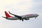 こだしさんが、成田国際空港で撮影したイースター航空 737-808の航空フォト(写真)