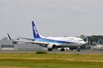 ワイエスさんが、鹿児島空港で撮影した全日空 737-881の航空フォト(写真)
