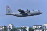 はるかのパパさんが、横田基地で撮影したアメリカ空軍 C-130H Herculesの航空フォト(写真)