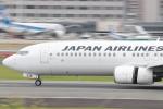 mktさんが、伊丹空港で撮影した日本航空 737-846の航空フォト(写真)