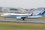 mktさんが、伊丹空港で撮影した全日空 737-881の航空フォト(写真)