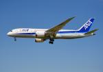 雲霧さんが、成田国際空港で撮影した全日空 787-8 Dreamlinerの航空フォト(写真)