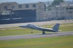 ja0hleさんが、名古屋飛行場で撮影した航空自衛隊 F-15DJ Eagleの航空フォト(写真)
